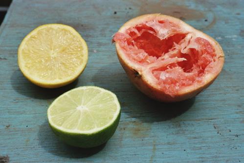 citrus-still-life.jpg